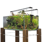 Wave/Amtra Shallow Tank