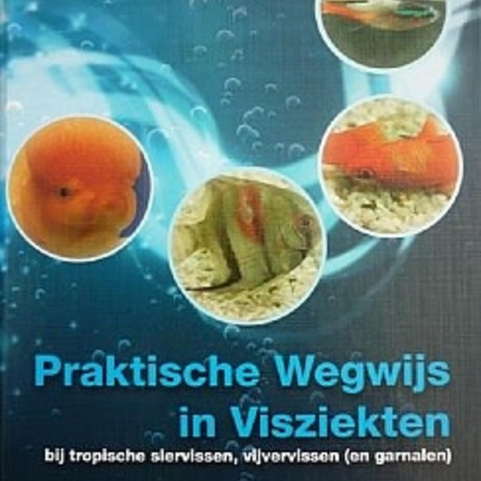 Dr Bassleer Praktische gids voor ziekten