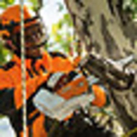 "Stihl Accu kettingzaag MSA 161 T, zonder accu of lader, 30 cm, PM3, 1/4""P"