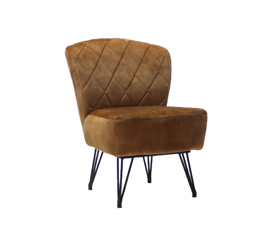 Samt Sessel Else modern ockergelb