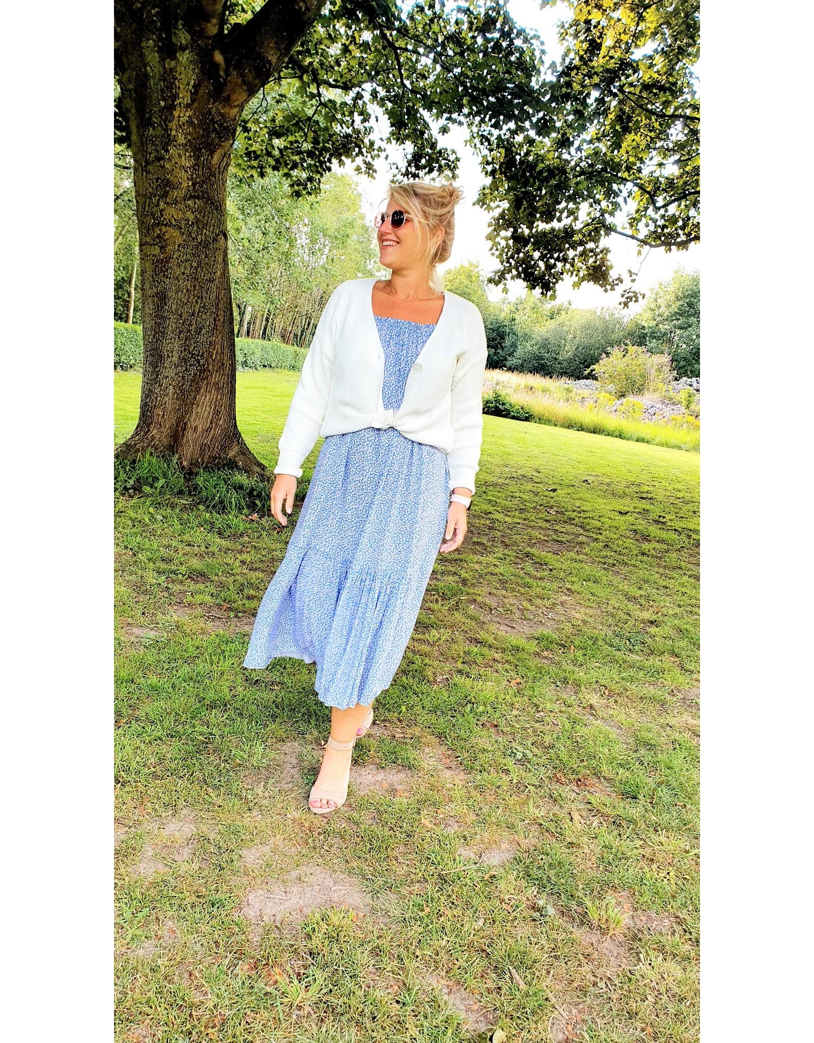 Thé blue vacay dress