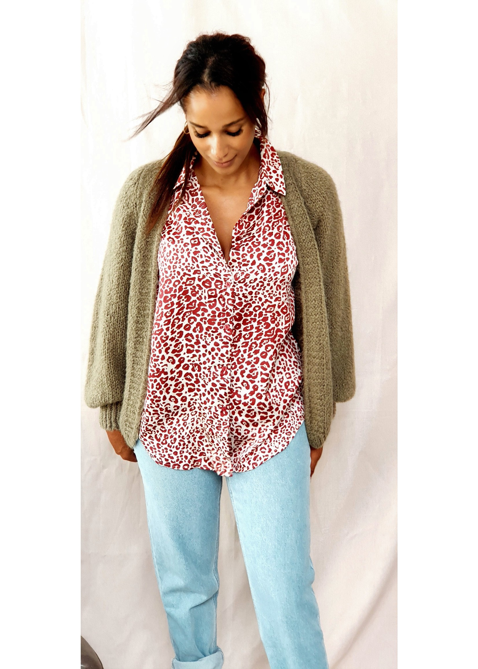 With A touch of leopard blouse