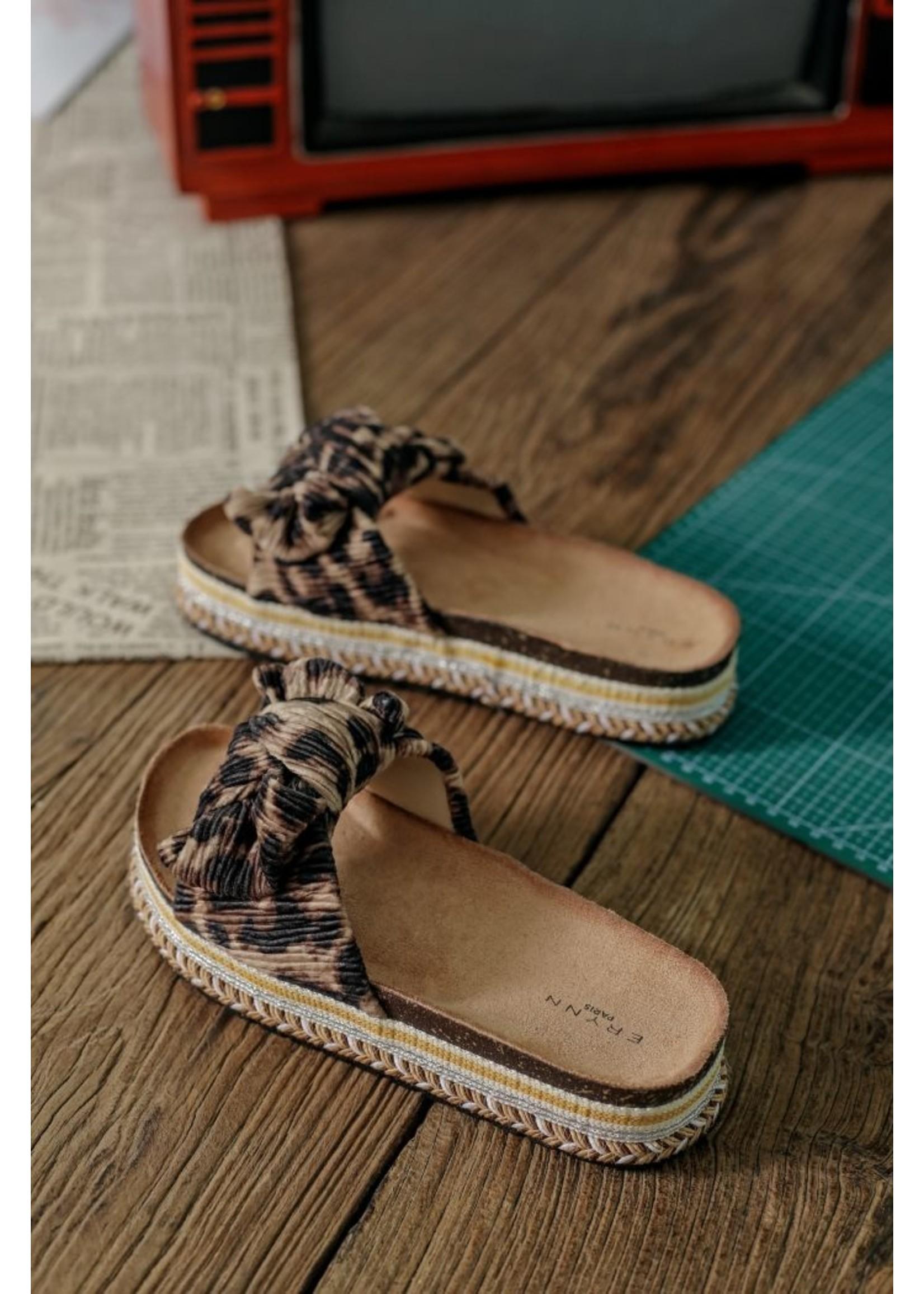 Leopard summer