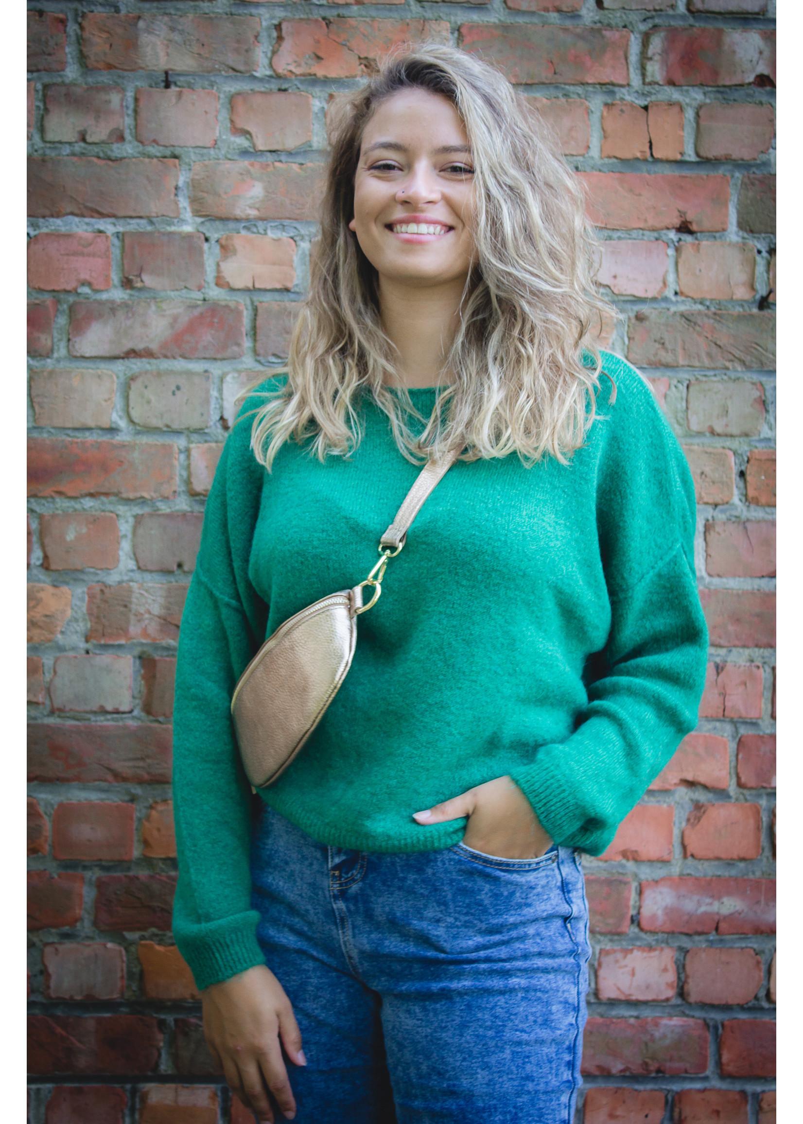 Tierra Di sienna Autumn green knit