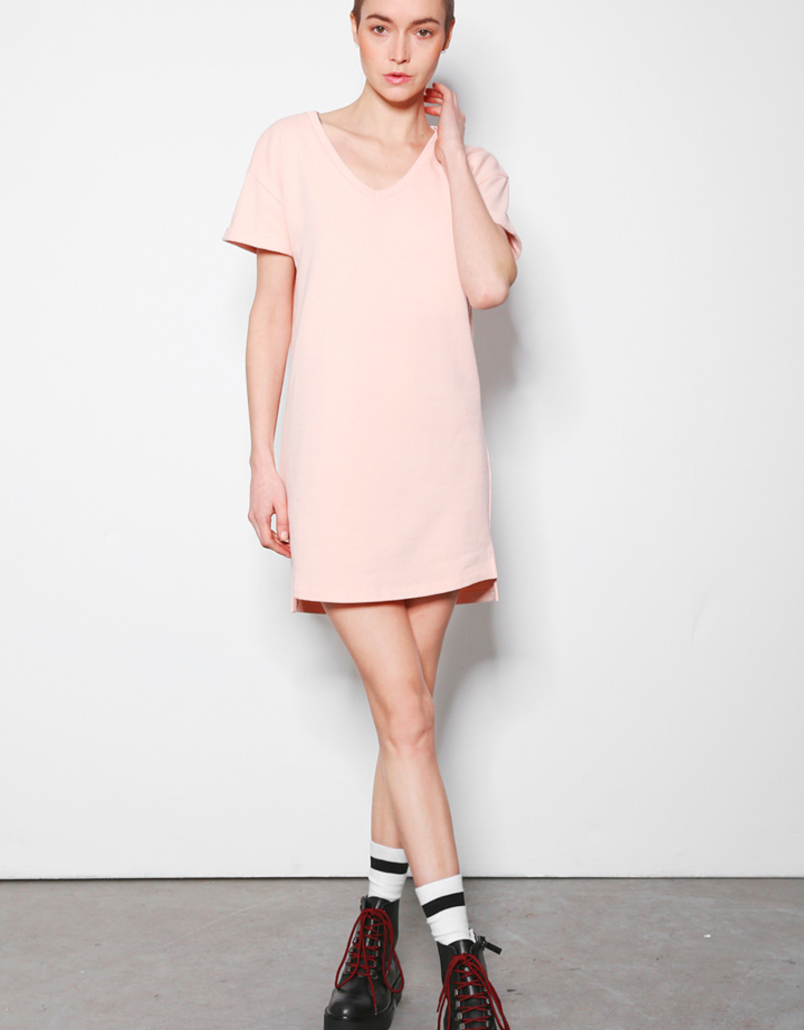 Alex dress pale brush