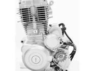 Shineray XY200ST II motorblok onderdelen