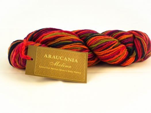 Araucania Molina - 106 - Herfstkleuren
