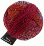 Schoppel Wolle Zauberball Crazy - 2231 - Buntmetall