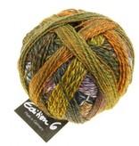 Schoppel Wolle Zauberball Edition 6 - 2328 - Gartentage