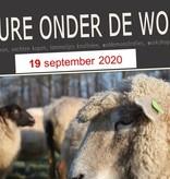 Joure onder de wol 2020