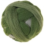 Schoppel Wolle Zauberball - 2260 - Randerscheinung