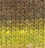 Noro Silk Garden Sock - 467 - Persimmon
