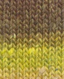 Silk Garden Sock - Nr. 467