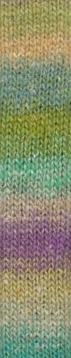 Noro Silk Garden Sock - 437 - Penelopes Gar