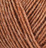 Onion Nettle Sock Yarn - 1032 - Lys Brun