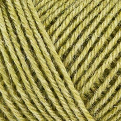Onion Nettle Sock Yarn - 1030 - Oliven