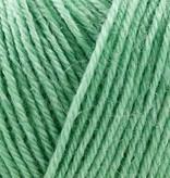 Onion Nettle Sock Yarn - 1021 - Lys Gron
