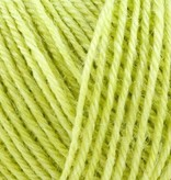 Onion Nettle Sock Yarn - 1014 - Lime