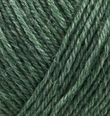 Onion Nettle Sock Yarn - 1006 - Gron