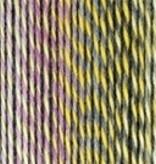 Schoppel Wolle Zauberball Stärke 6 - 2355 - Gartenparty