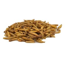 Black Soldier Fly larvae 125 gram