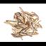 Carnis Spiering gedroogd (100gr)