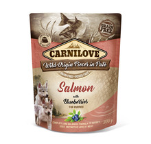 Paté (pouch) Salmon with Blueberries for Puppies 300g