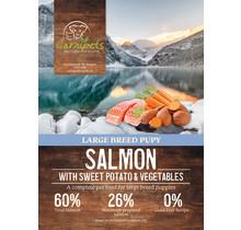 Grain Free Puppy Large Breed Salmon 12 kg