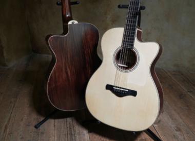 Akoestische gitaren (Staal)