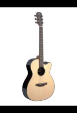 J.N. Guitars LYN-ACFI Acoustic/electric guitar