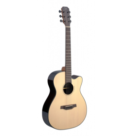 J.N. Guitars LYN-ACFI akoestisch/elektrisch gitaar