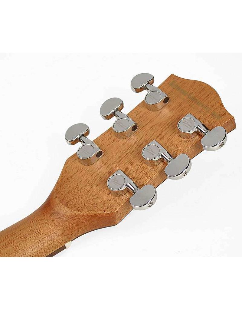 Richwood G-40-CESB acoustic/electric guitar