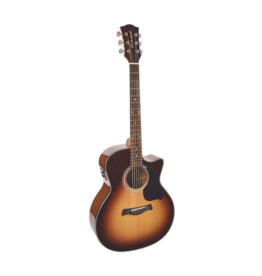 Richwood G-40-CESB acoustic/electric guitar