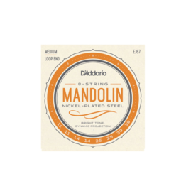 D'addario Mandolin strings 011-039