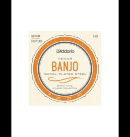 D'addario EJ63 Banjo strings 009-030