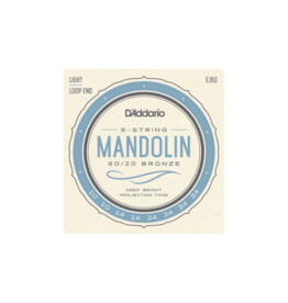 D'addario Mandolin strings 010-034