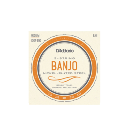 D'addario EJ61 5-snarig banjo snaren 010-023