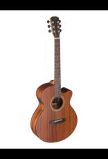 J.N. Guitars DEV-ACFI akoestisch/elektrisch gitaar
