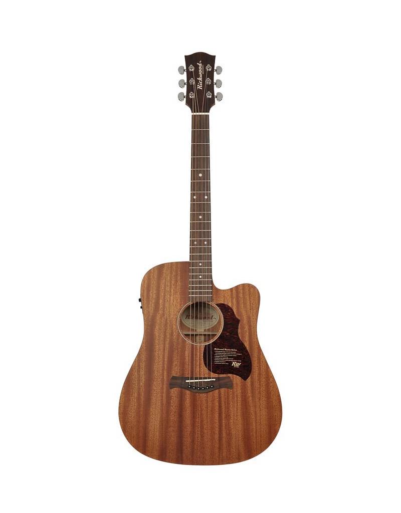Richwood D-50-CE Acoustic/electric guitar