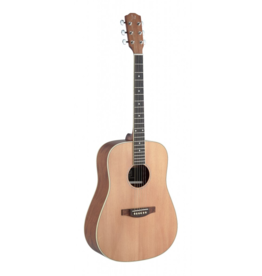 J.N. Guitars ASY-D acoustic guitar