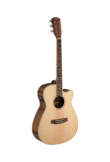 J.N. Guitars ASY-ACE Acoustic/electric guitar