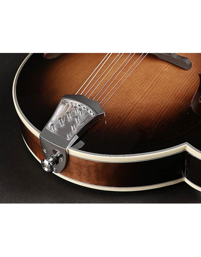 Richwood RMF-100-VS F-style mandolin