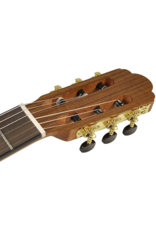 Salvador CS-244 Classical guitar