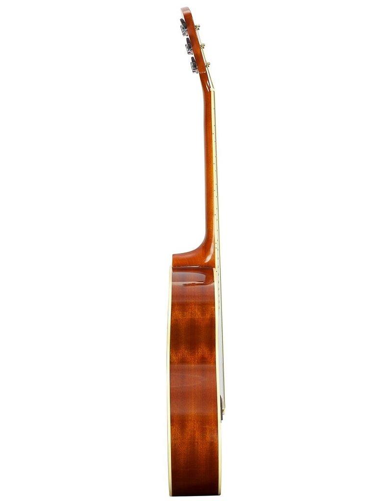 Brunswick BF200 M Acoustic guitar mahogany