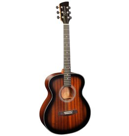 Brunswick BF200 TB Acoustic guitar tobacco burst