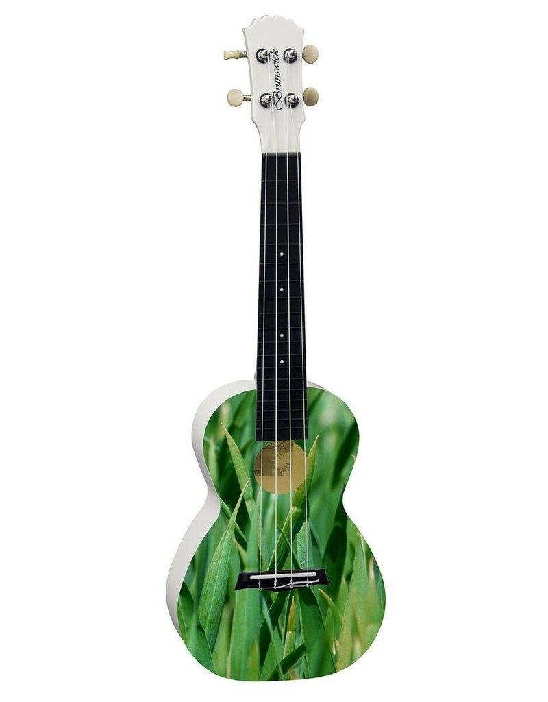 Brunswick Meadow Concert ukulele