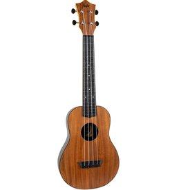 Flight Travel Acacia concert ukulele