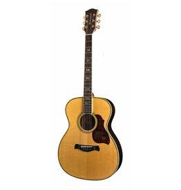 Richwood A-70 akoestische gitaar