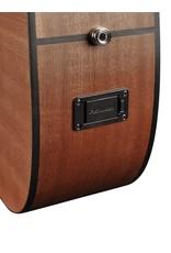 Richwood G-20-CE Akoestisch/elektrisch gitaar