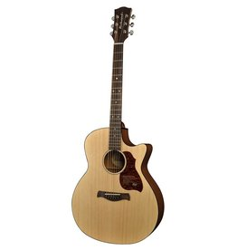 Richwood G-20-CE acoustic/electric guitar